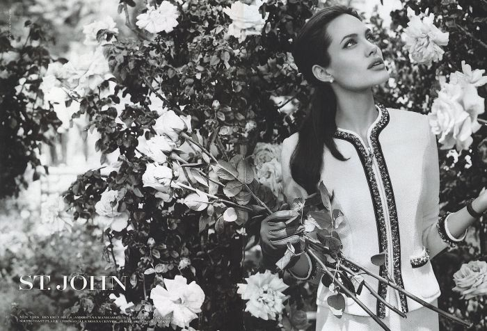 Angelina Jolie for St. John