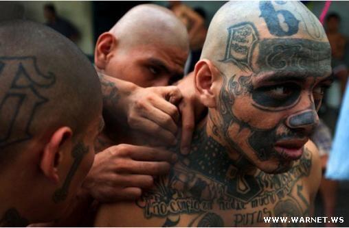 MS 13 - самая жестокая банда в мире