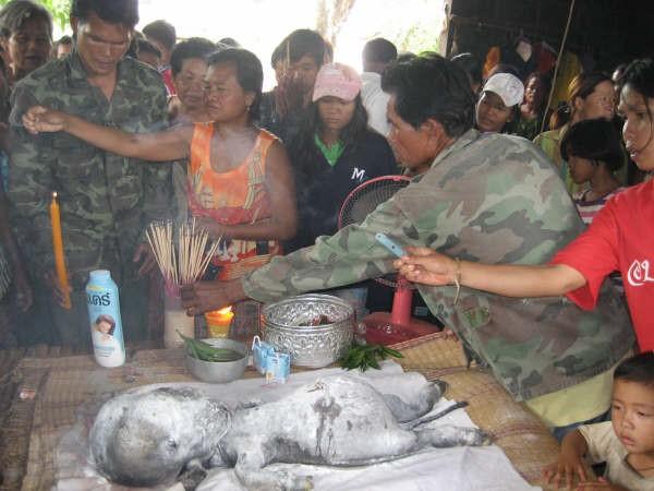 В Тайланде нашли пришельца