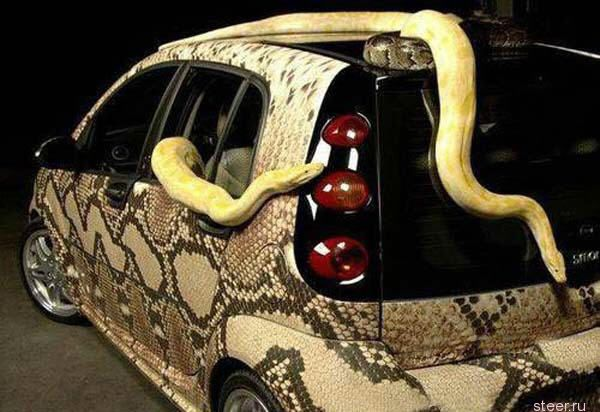 Змеинный тюнниг