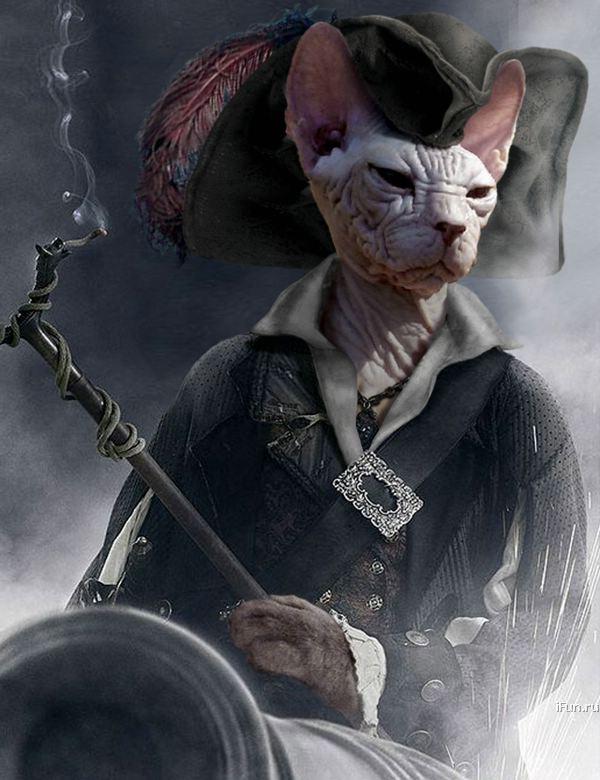 Зверюшки-пираты!