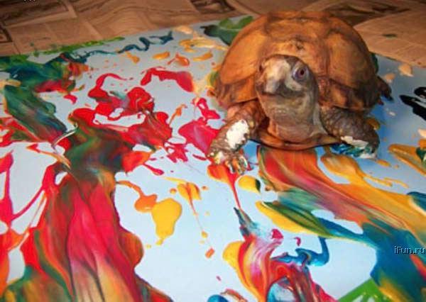 Черепаха-художник