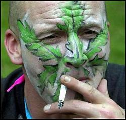 Марихуана опасней табака