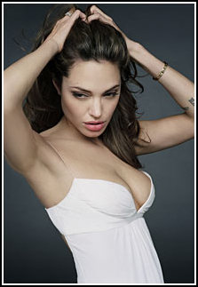 Меган Фокс — двойник Анжелины Джоли?