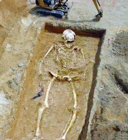 12-метровый скелет человека