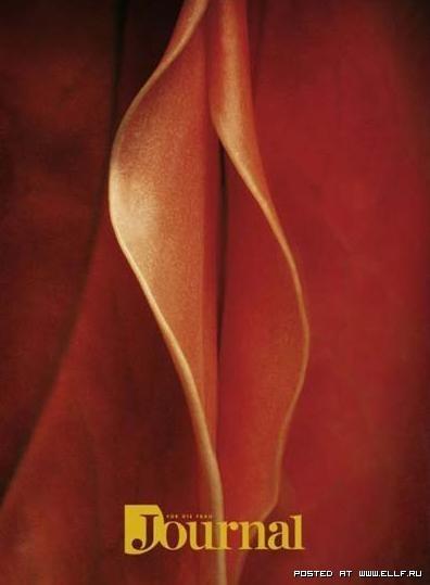 Использование сексуальных образов в рекламе