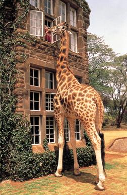Топ-9: самые удивительные отели в мире