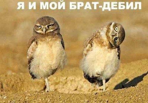 (: Фото- боянчики :)