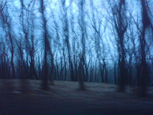 Мрачная природа