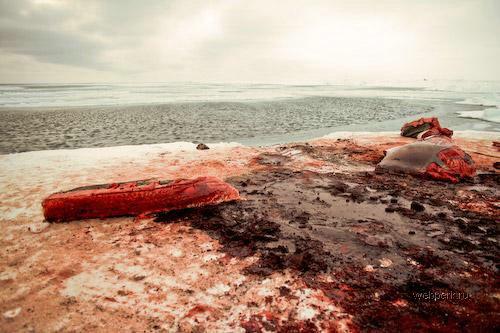 Охота на китов