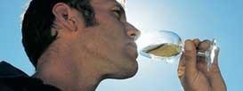 Почему нельзя пить воды столько, сколько хочется