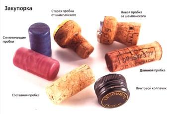Поговорим про вино!