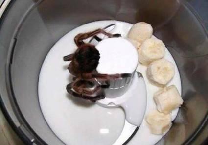 Банановый коктейль с тарантулом