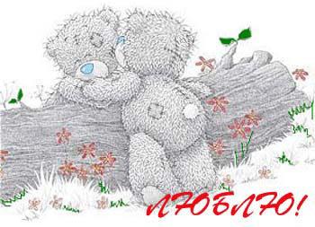 Плюшевые мишки Teddy