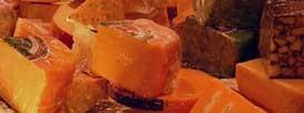 Сыр – источник белка и витаминов