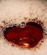 Ученые выяснили, что за любовь отвечает нерв в носу
