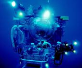 В Атлантическом океане на рекордной глубине поймана рыба