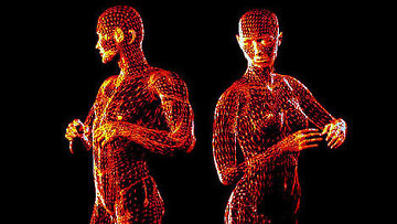 Сексуальная привлекательность зависит от симметрии тела - исследование