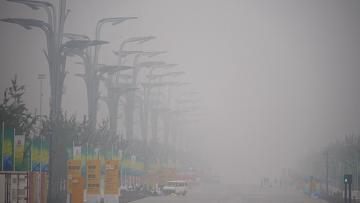 Власти Китая приняли закон о мусоре