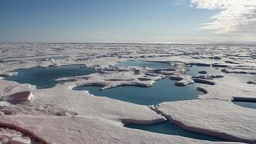 Площадь арктических льдов в 2008 году может стать рекордно минимальной
