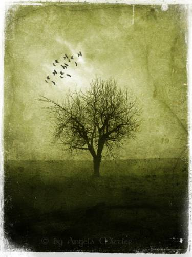 Мрачные пейзажи. Часть 3