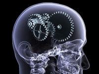 Гимнастику для мозга пробовали?