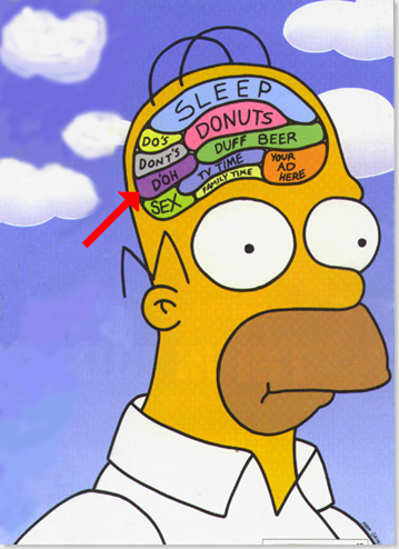 10 фактов о человеческом мозге!