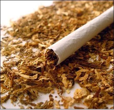 Лекарство от СПИДа нашли … в табаке