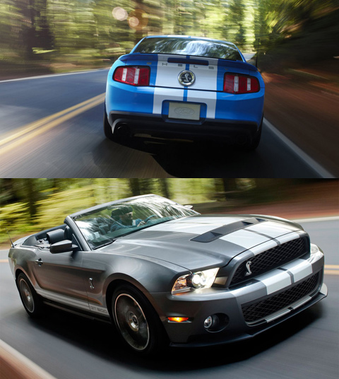 ������ ������ � ����: ������ Shelby ������ ������������� ��������