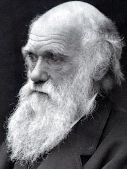 Ученые обнаружили счета Чарльза Дарвина