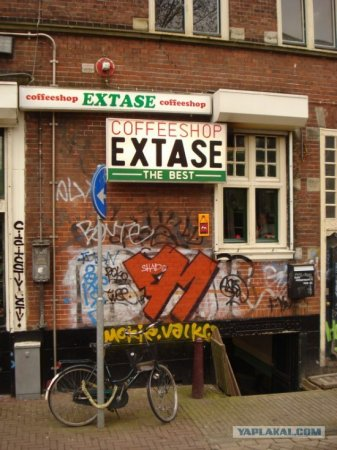 Амстердам. Кофешоппинг