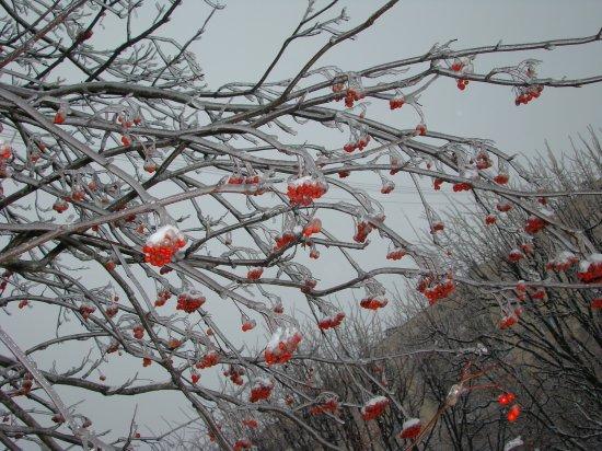 Минск зимой. 2009. Without Photoshop