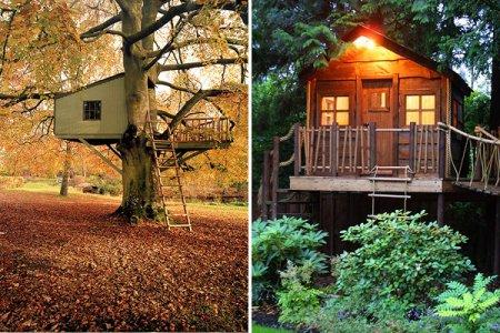 Дома на деревьях от Amazon Tree Houses