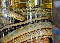 Змея из бутылки водки укусила мужчину