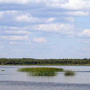 Остров эмигрировал в Эстонию