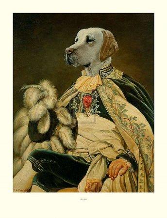 Мир собак