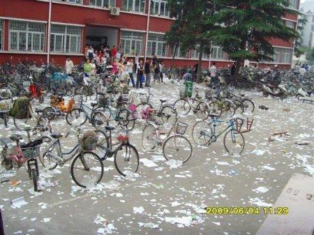 После экзаменов в Китае
