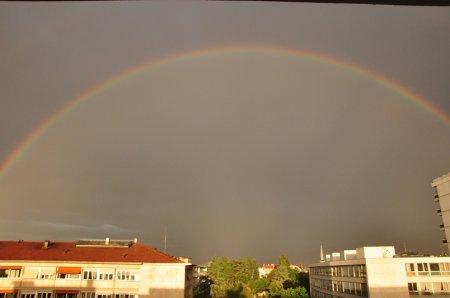 1 день из моего окна