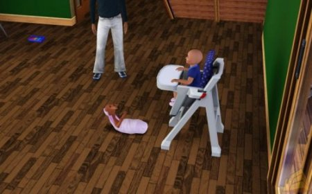 ������� ���� � The Sims 3