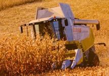 Путин проверит данные о скрытом импорте белорусской сельхозтехники