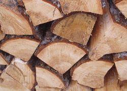 Белорусским рабочим пообещали выдать зарплату дровами