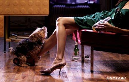 Секс и алкоголь спасают мужчин от проблем со здоровьем