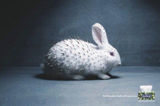 Креативные рекламные плакаты