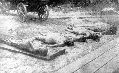 Найдены очередные могилы убитых поляков времен Второй мировой