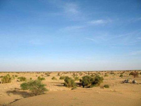 В Сахаре хотят построить гигантскую стену на 6 тысяч километров