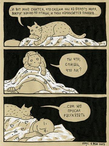 Кот (2)