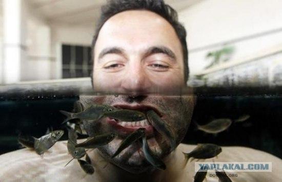 Почисти зубы рыбкой