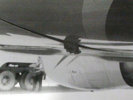 Труп в самолете путешествовал по миру 5 дней