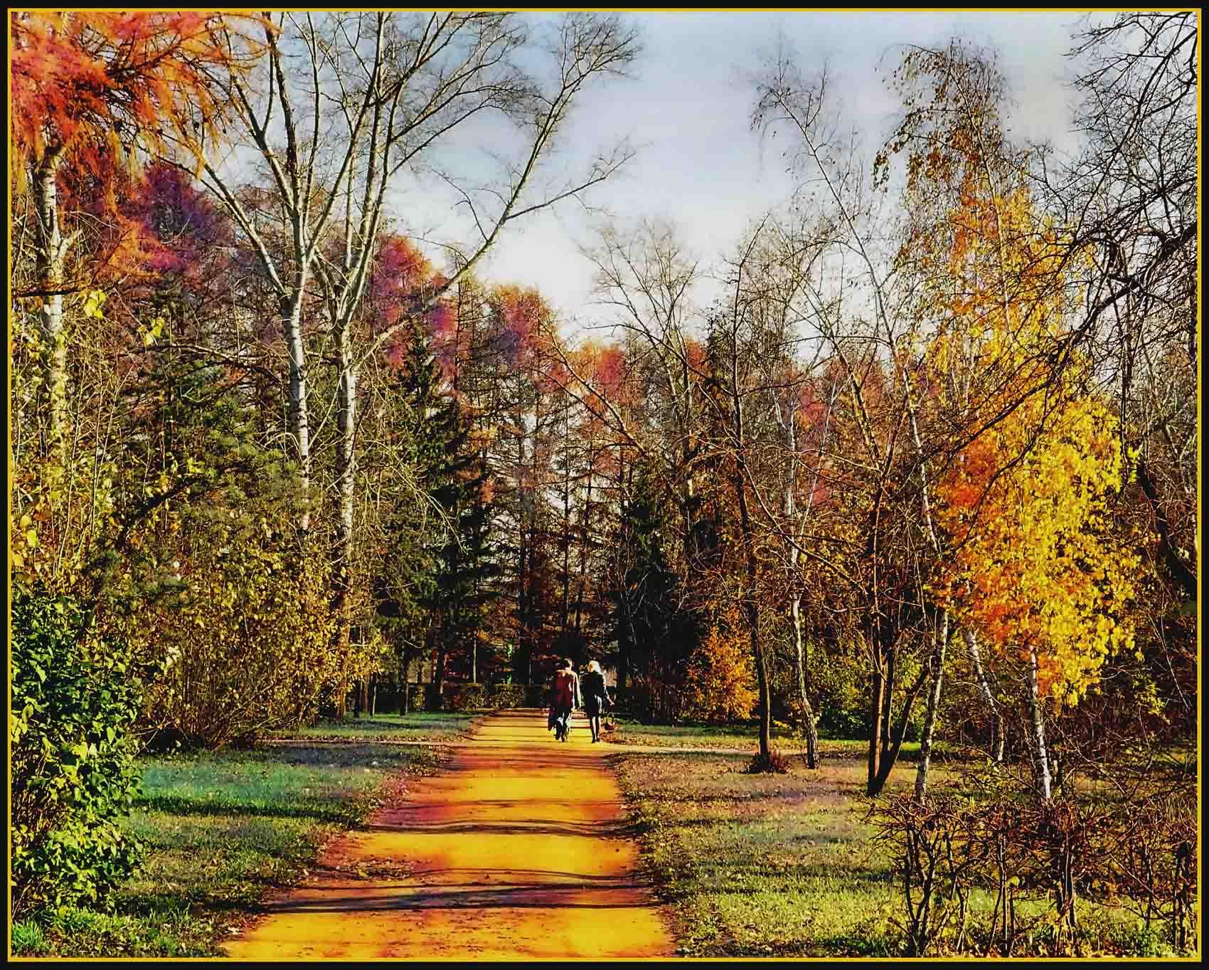 открытки осень наступила фото поэтому ландыш