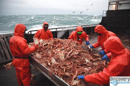 Улов или жизнь: ловля крабов - одна из самых опасных работ в мире